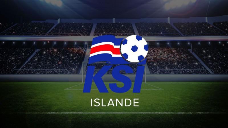 Selection de l'équipe d'Islande pour l'euro 2016