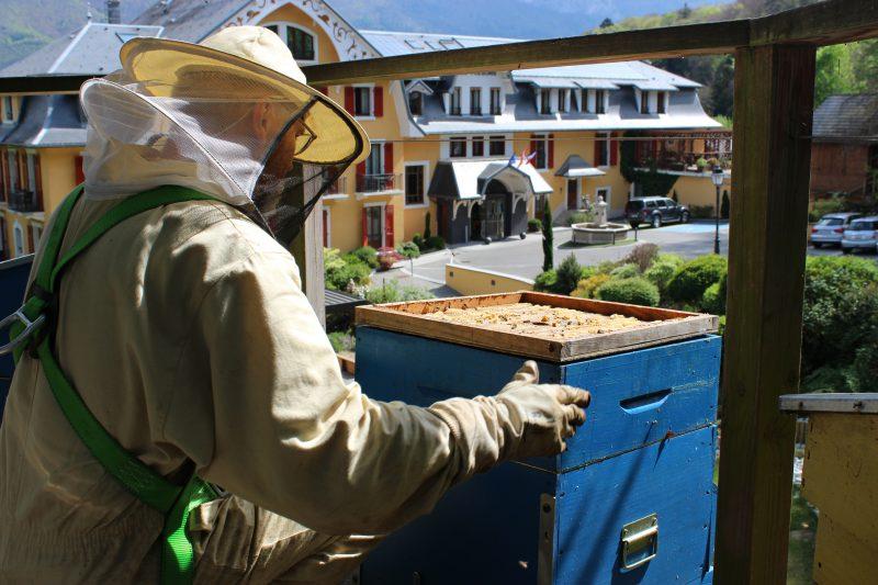 L'apiculteur prend soin des Abeilles - Rucher des Trésoms - Hotel environnemental Annecy